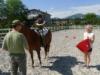 dopoledne na koni