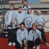 Soutěže tenisových družstev 2014